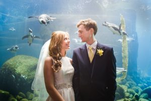 Bride & groom stood in front of the penguins at their Bristol zoo wedding